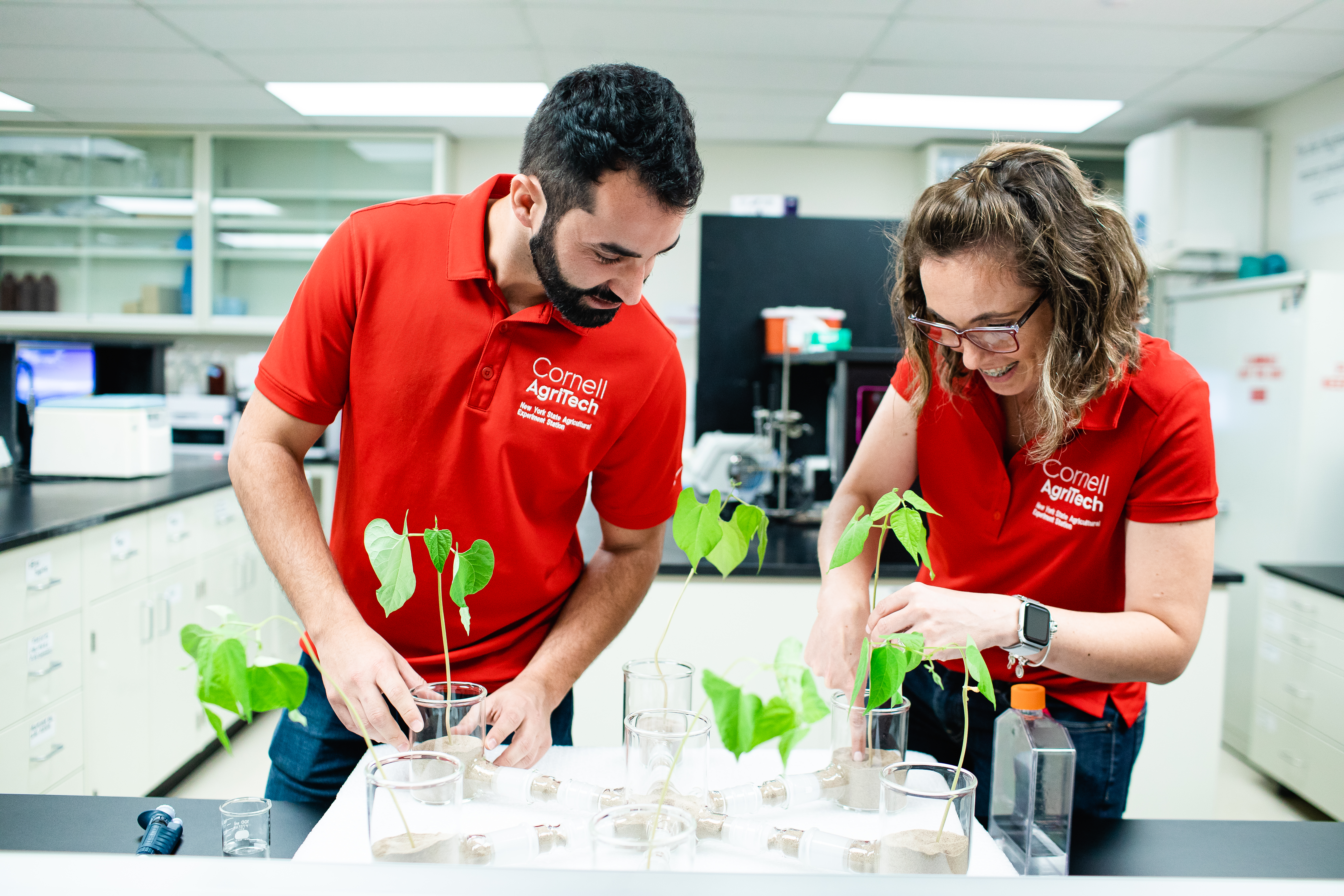 Two people inspecting plants in lab setting.