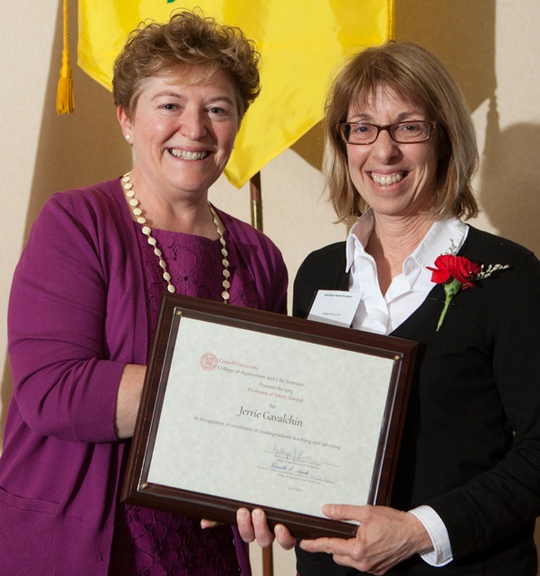 Jerrie Gavalchin stands with Kathryn J. Boor at an awards ceremony