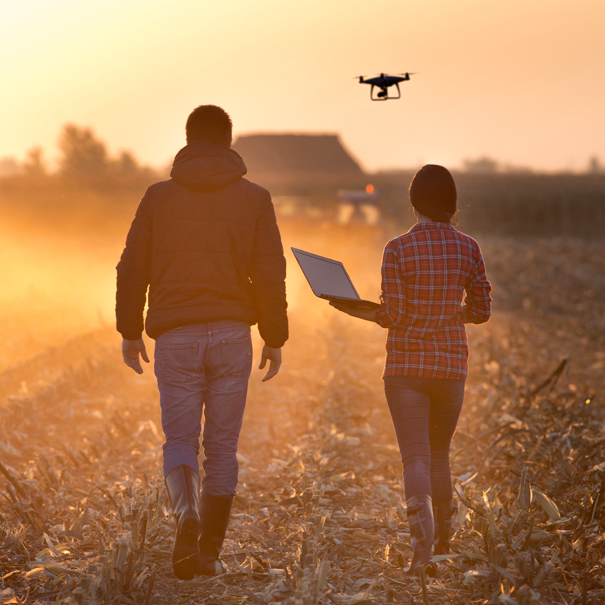 Two people walk through a field at dusk, one person holding a laptop, and a drone is flying overhead.
