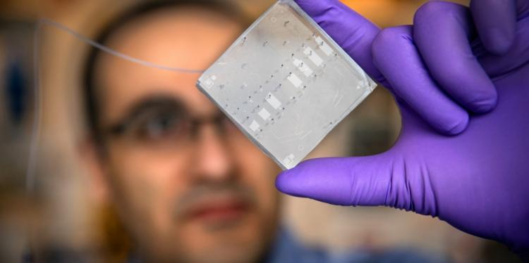 A researcher holds up a microchip