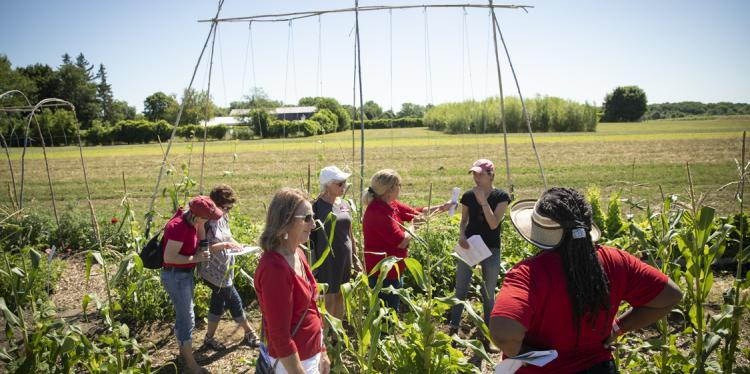 volunteers and educators stand in a field