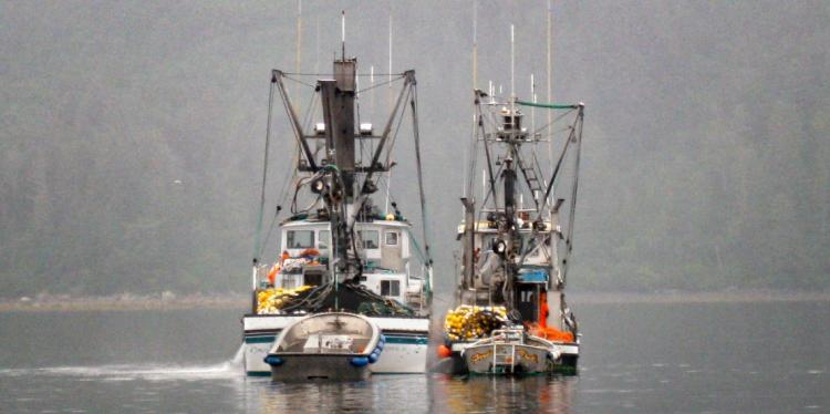Two fishing boats sitting side by side in the water