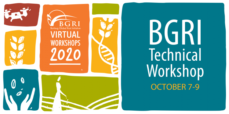 BGRI Technical Workshop October 7-9