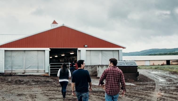 Two students walking into a barn.