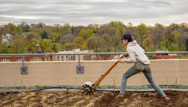 a woman works a field on top of a building