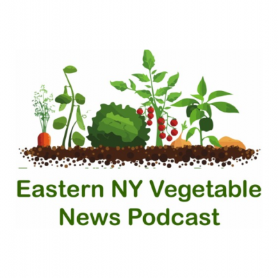 Easter NY Vegetable News Podcast