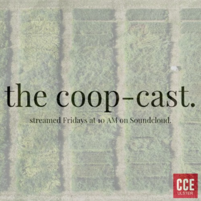 the coop-cast. streamed fridays at 10 am on soundcloud.