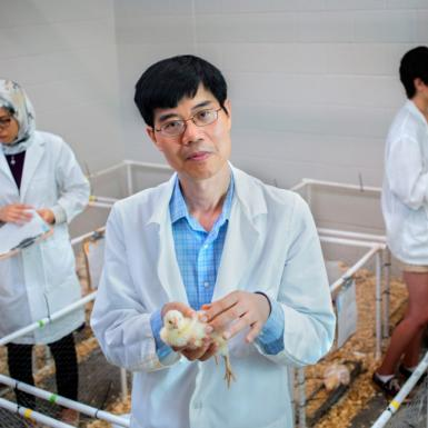 An asian male standing in a room containing pens of chickens with male and female lab workers behind him