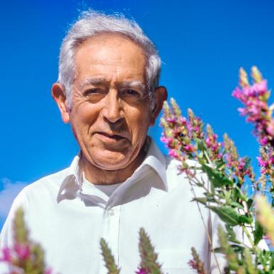 An older man standing in a field a flowers with a blue sky behind him