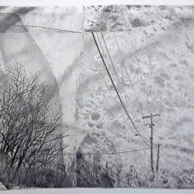Black and white artwork showing phone lines and grass.