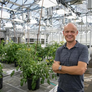 a bald man stands in a greenhouse