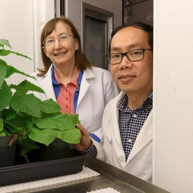A man and woman standing next to green plants