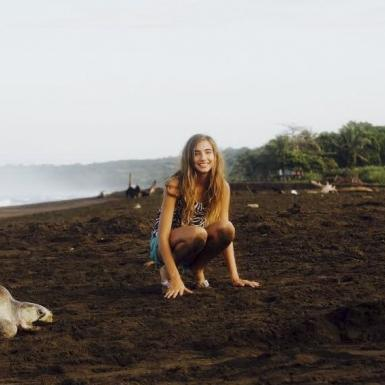 A girl on the beach crouching between two large sea turtles