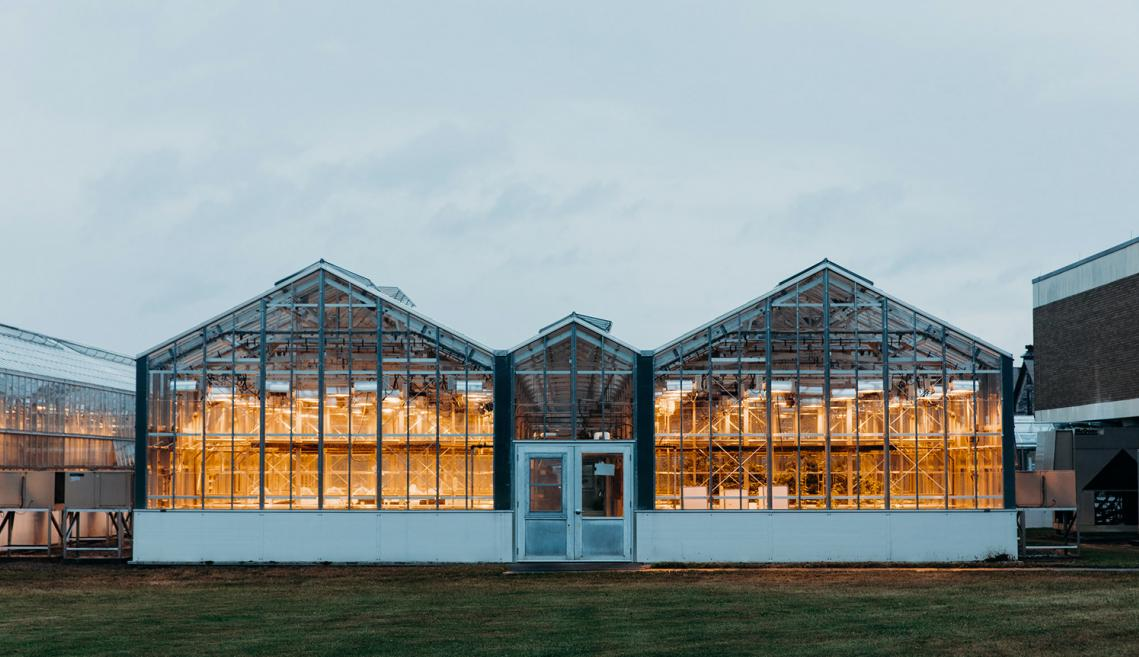 A greenhouse exterior lit up with lights.