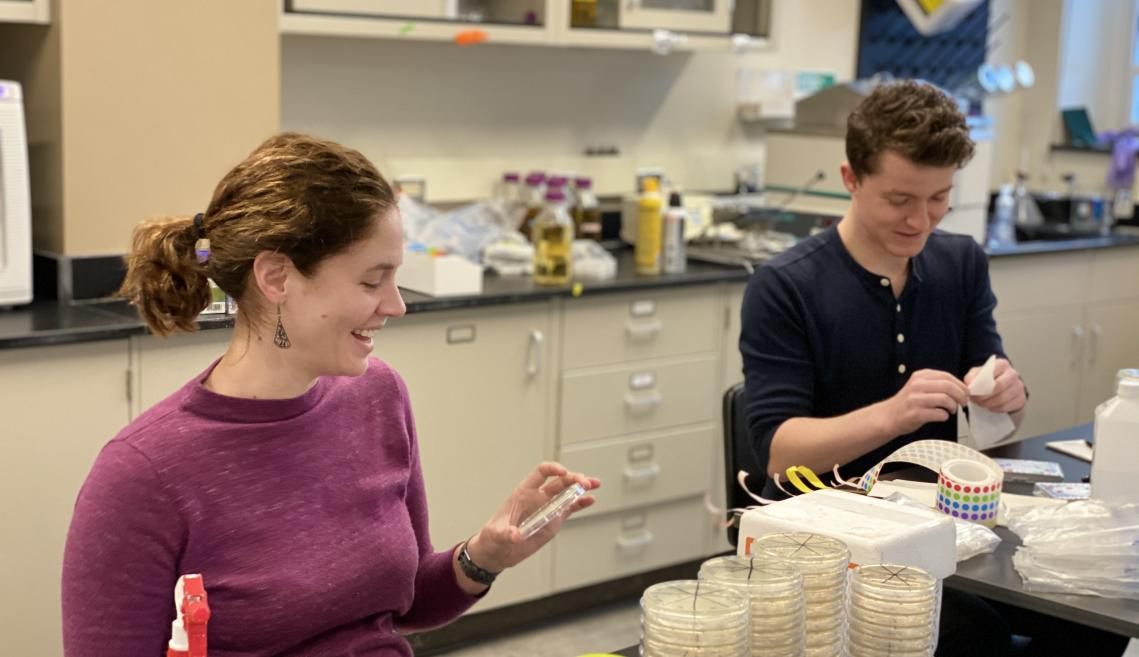 a woman looks at a petri dish and a man pulls stickers to add to stacks of petri dishes