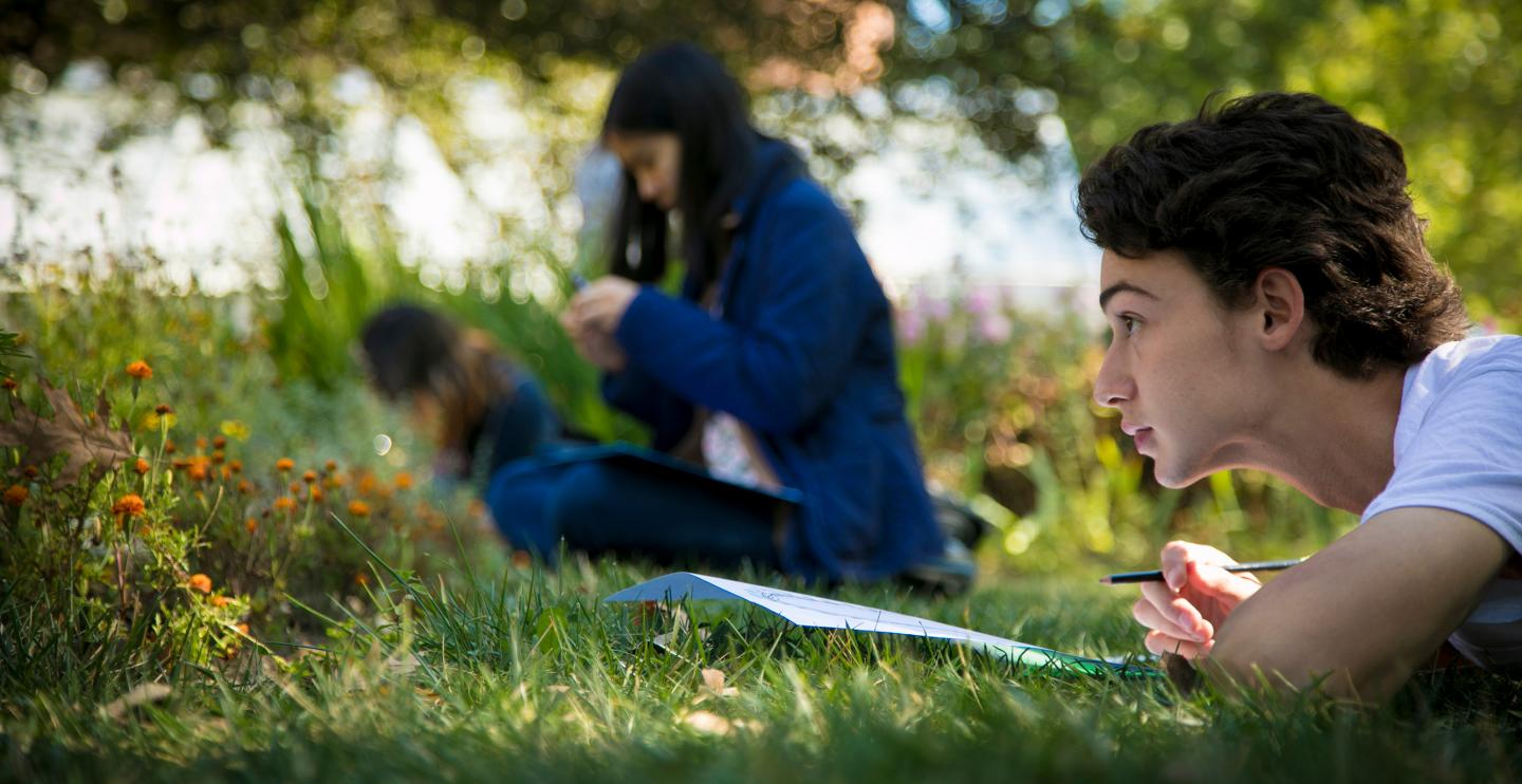 Student drawing biodiveristy while lying down in the grass.
