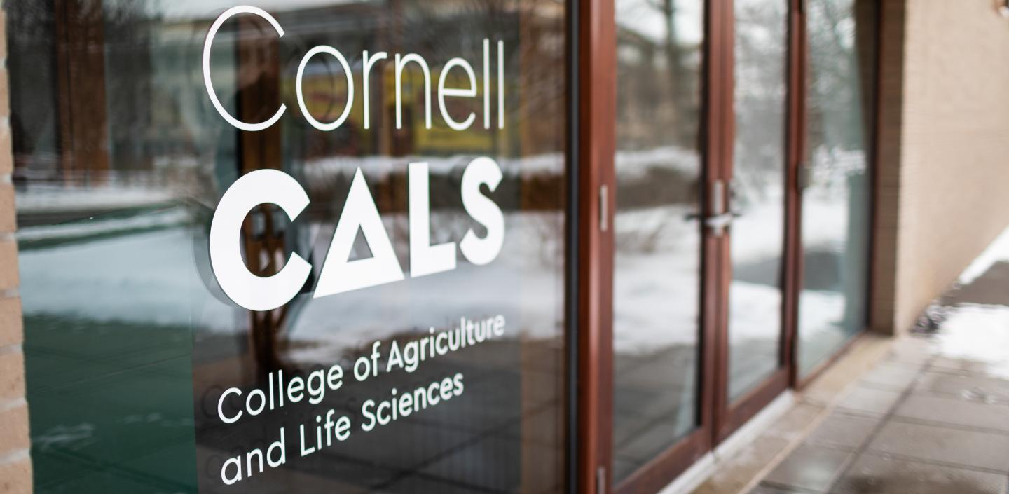 Building doors with Cornell CALS logo on it
