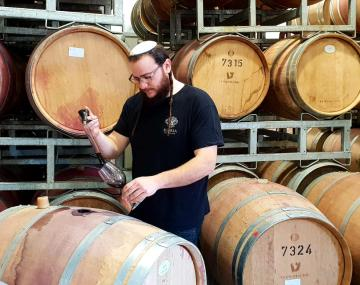 Jacob Tennenbaum extracts wine from barrel