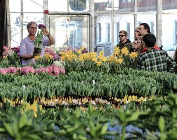 bill miller shows hortus forum students forced flower bulbs in greenshouse