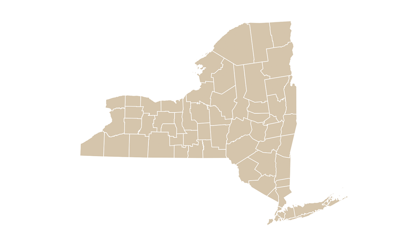 map of new york state with county lines