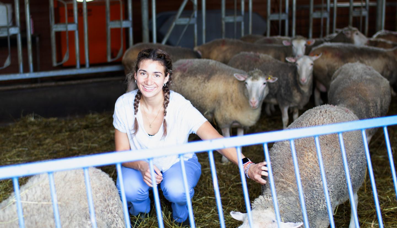 Chloe Chavez squatting in a barn among sheep