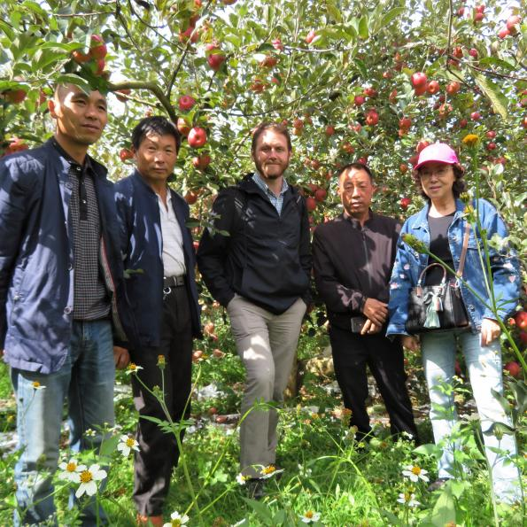 Five people stand under apple trees