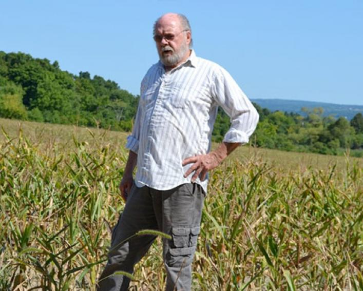 Farmer Marvin Rood stands in corn and soybean fields impacted by drought
