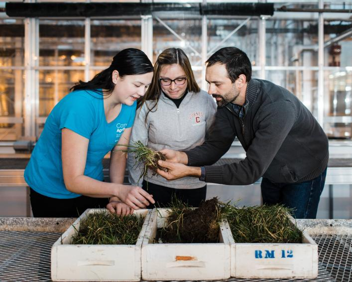 Professor, student and lab tech examine soil.