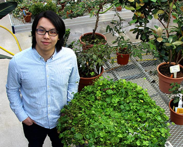 Plant Science Alum Jeffrey Yen in the Liberty Hyde Bailey Conservatory