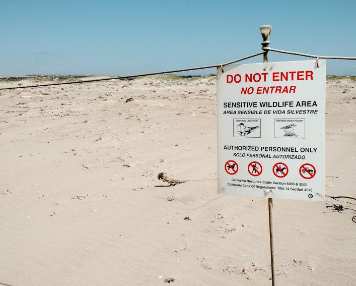 "Warning sign on beach dune that reads ""Do Not Enter"""