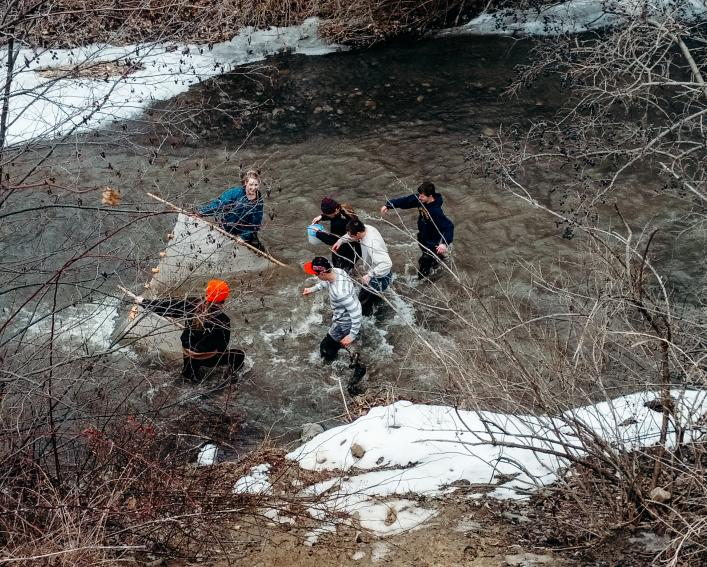 Students seining river
