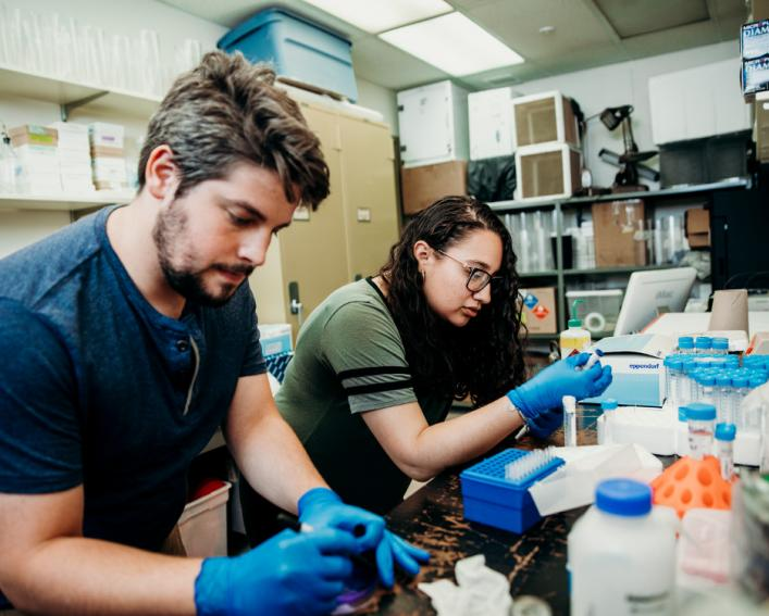 Male graduate student and female summer scholar perform lab work.