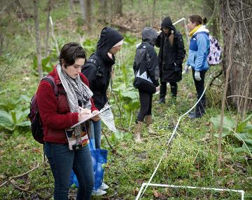 Students conducting research in a forest