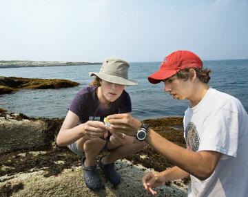 Students observing the ocean