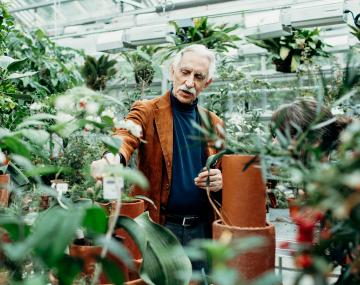 A man working in a greenhouse full of plants.