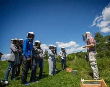 students learning about beekeeping