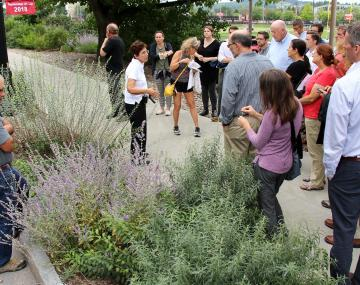 Group touring bioswale along road