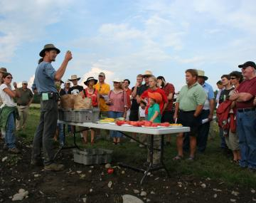 Field day attendees learn about new vegetable varieties