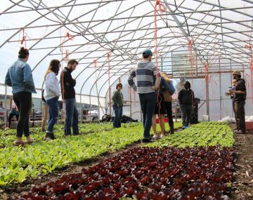 Organic certification class listen to farmer in high tunnel filled with lettuces
