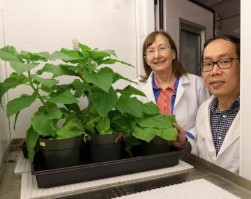 Man and woman in lab coats with plants