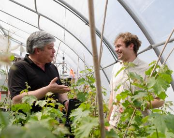 two men interacting in a greenhouse