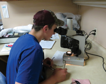 young person with baseball hat looking into a microscope